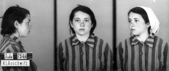 Auschwitz Identification photograph. Prisoner number 7544. (Courtesy of Yad Vashem images)