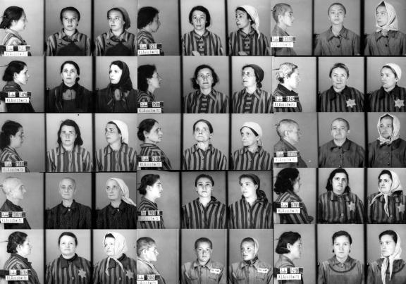 Auschwitz Identification photographs. (Courtesy of Google Images)